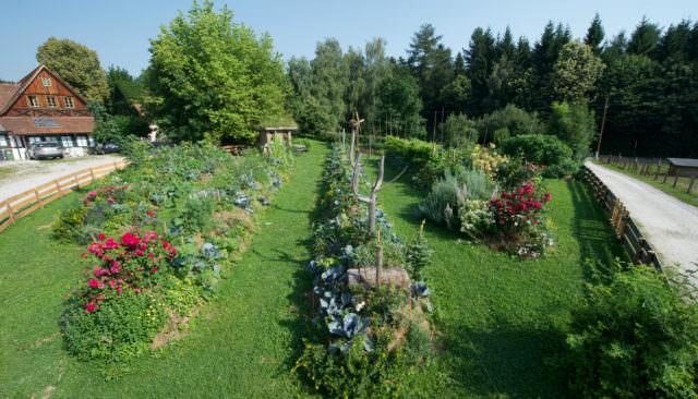 Wirtshaus Jagawirt - Landwirtschaft